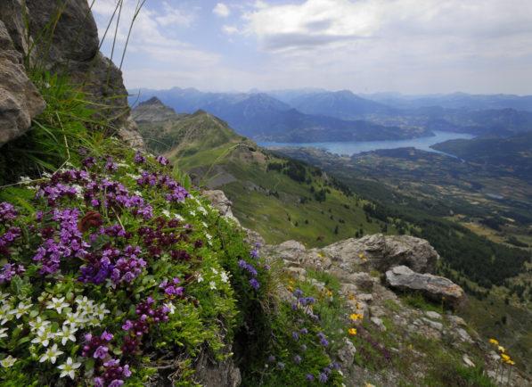 lac de Serre-Ponçon depuis la Pousterle